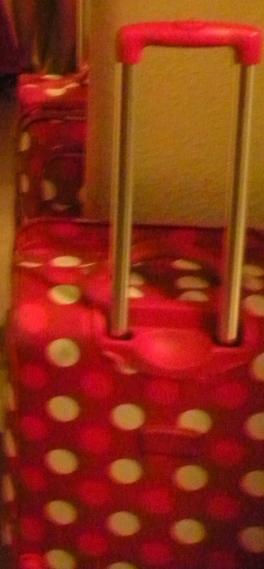 Mein alter Koffer (ich konnte leider kein besseres Bild finden)