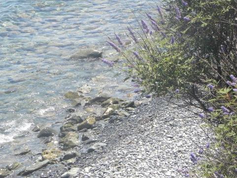 Der Strand von Erbalunga