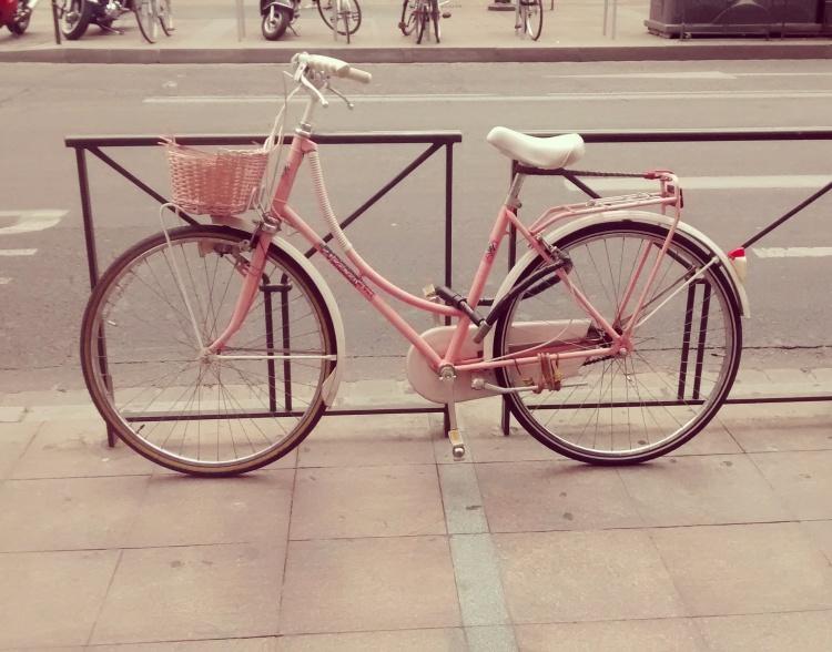 rosa Rad