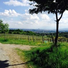 Ausblick auf Wien vom Kahlenberg