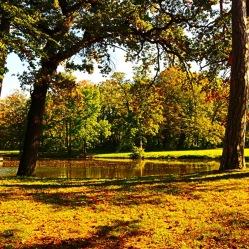 Herbstspaziergang im Schlosspark Laxenburg