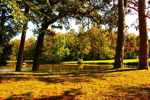 Der Schlosspark Laxenburg im Herbst