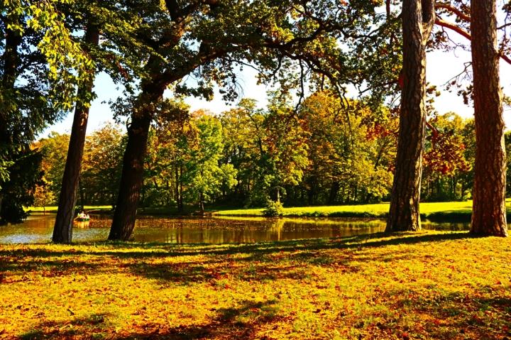 Goldener Herbst im SchlossparkLaxenburg