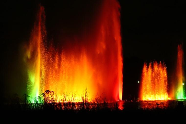Wasserlichtkonzert abends Hamburg_Planten un Blomen.jpg