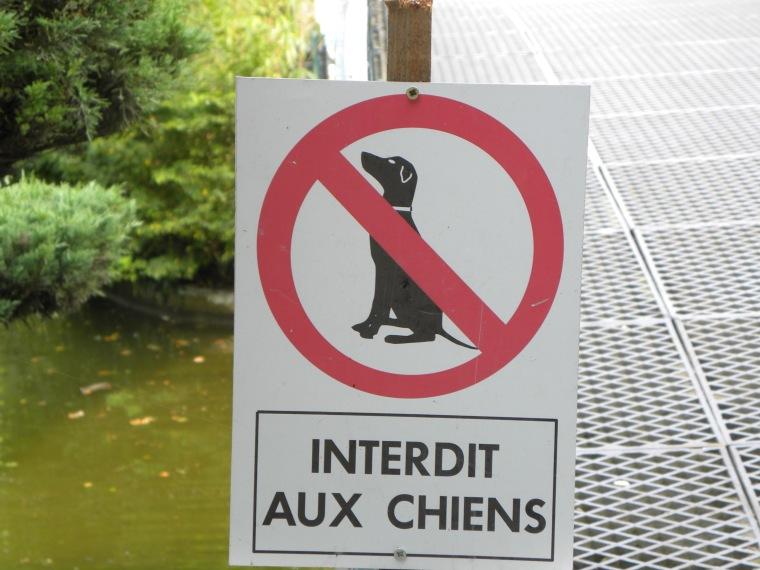 Interdit aux chiens