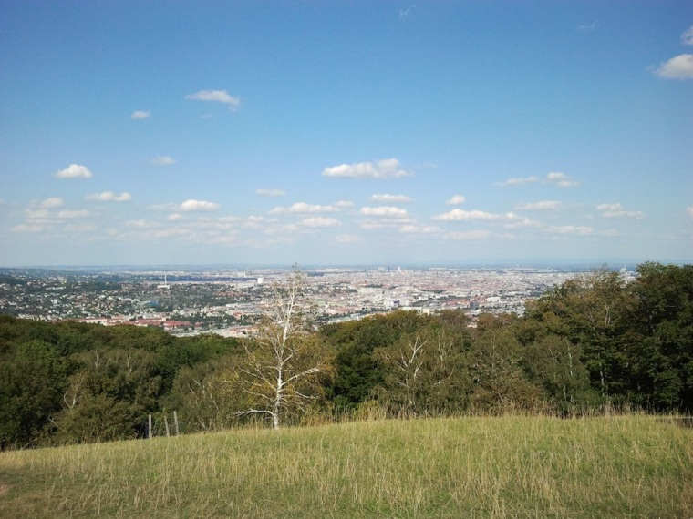Ausblick vom Lainzer Tiergarten auf Wien