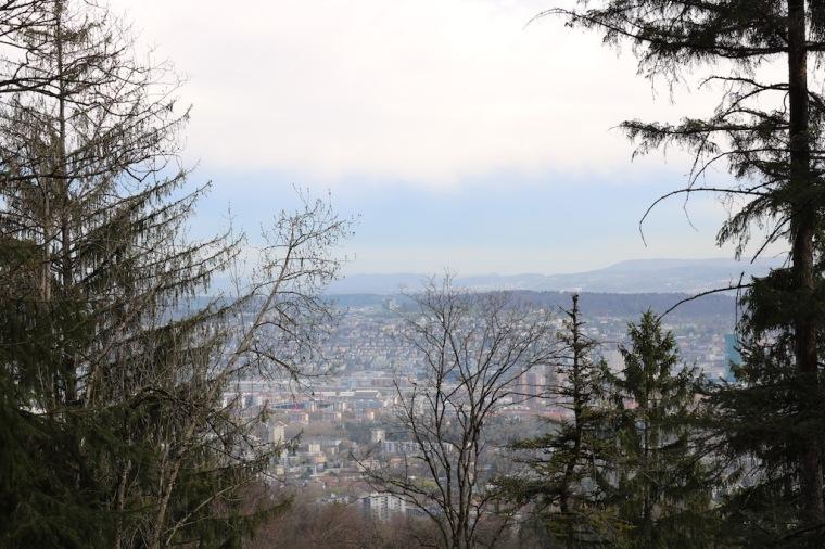 Ausblick auf Zürich vom Wanderweg_Uetliberg.jpg