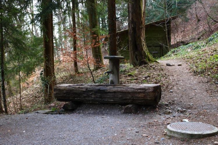 Brunnen am Weg zum Uetliberg
