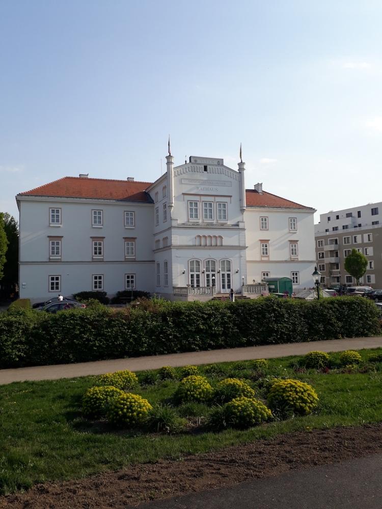 Das Rathaus in Tulln