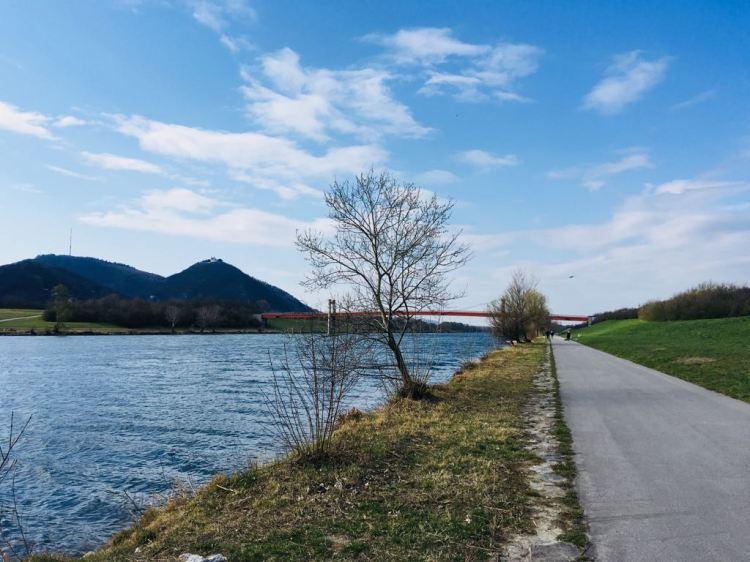 Frühlingsspaziergang entlang der Donau