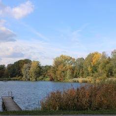 Im Herbst ist das Tullner Aubad besonders schön.