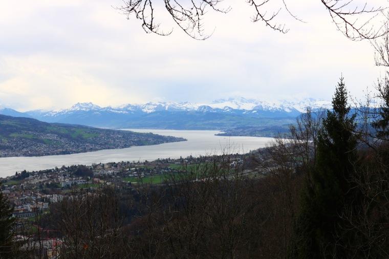 Ausblick vom Uetliberg Zürich.jpg