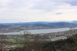 Bick auf den Zürichsee