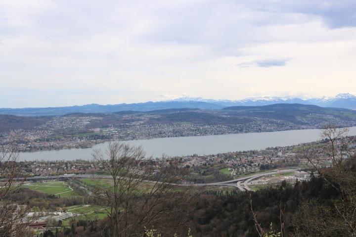 Blick auf den Zürichsee vom Uetliberg aus
