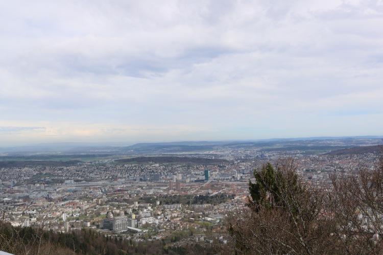 Blick auf Zürich vom Uetliberg aus