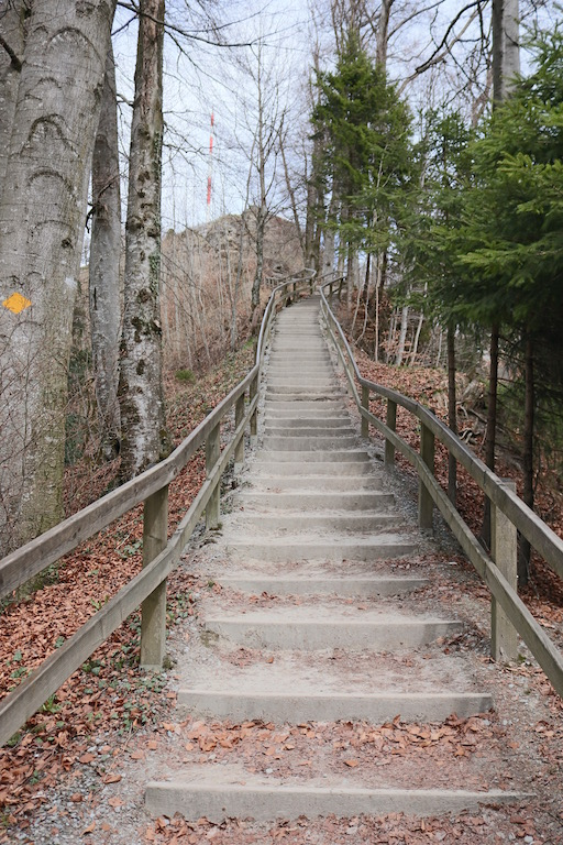 Treppenweg Uetliberg