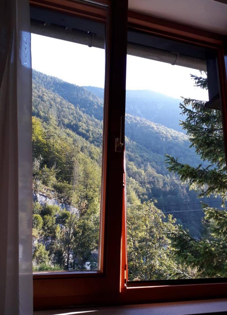 herrlicher-ausblick-am-morgen_hotel-apartmenthouse-seerose-obertraun.jpeg