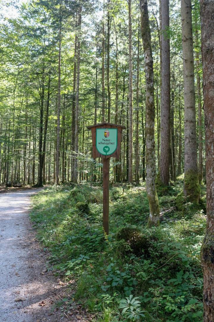 Naturschutzgebiet Koppenwinkel