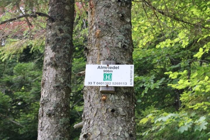 Wandern in Obertraun_Sarsteinhütte_Almriedl
