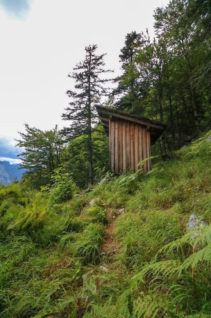 Wanderung zur Sarsteinhütte_Goiseer Aussicht
