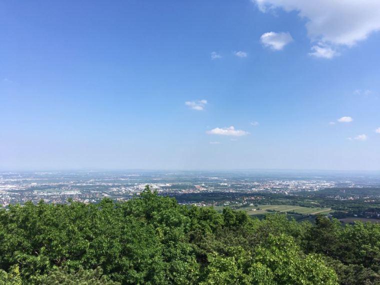 Ausflugstipp Perchtoldsdorfer Heide Aussicht vom Parapluieberg