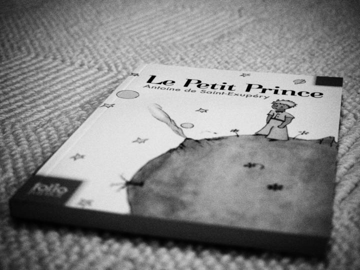 Le Petit Prince_Französisch lernen_Einstiegslektüre