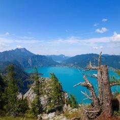 Ausblick vom Schoberstein auf den wunderschönen Attersee