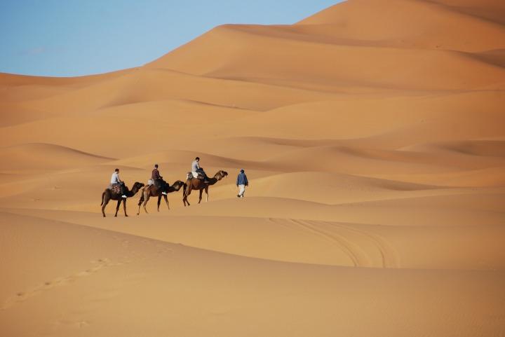 Kamelritt durch die Wüste Marokkos