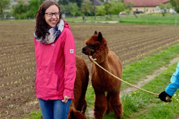 Alpakawanderung_Fun with alpacas