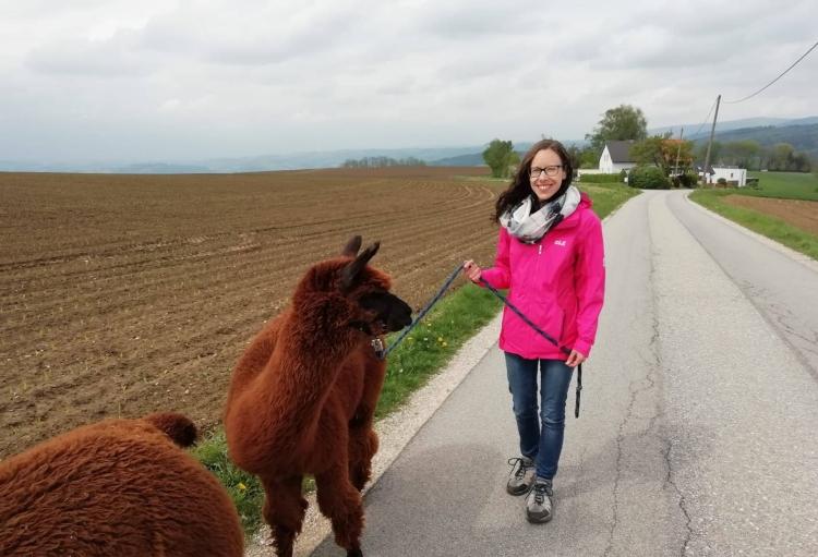 Meine erste Alpakawanderung