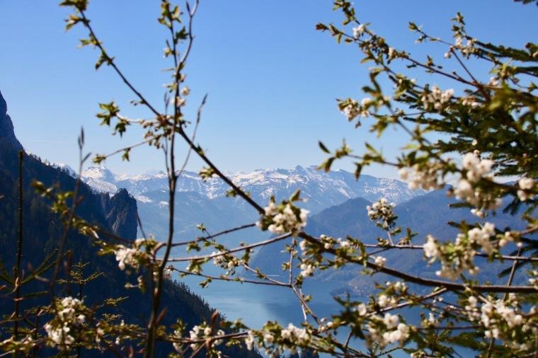 Wanderung zum Laudachsee Grünberg