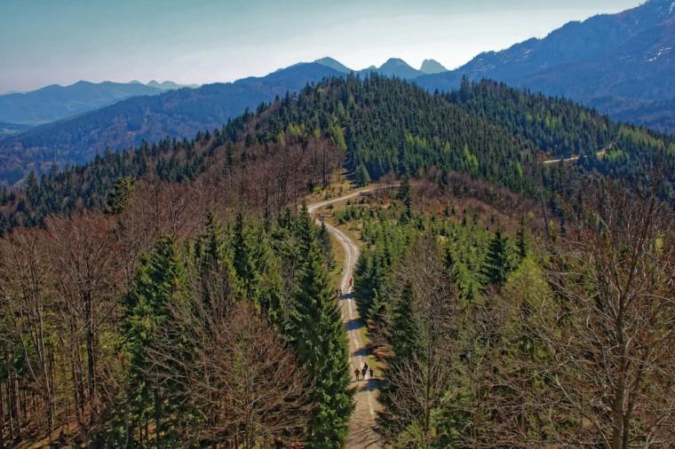 Wanderung zum Laudachsee_Grünberg