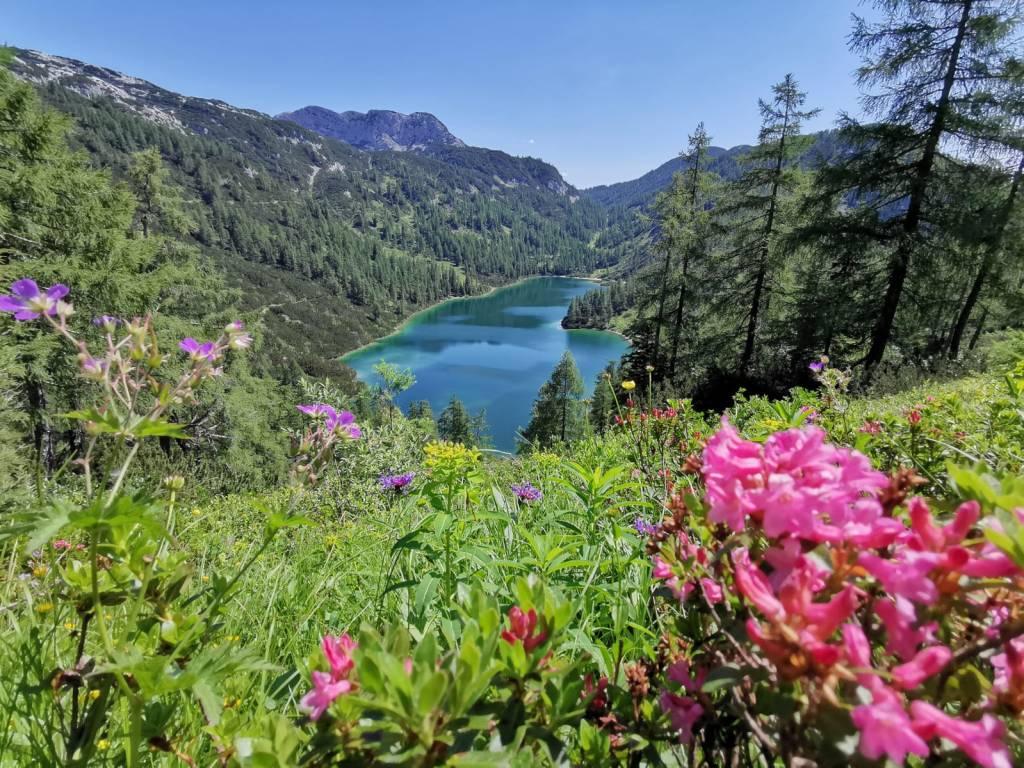 6-Seen-Wanderung auf der Tauplitzalm im Sommer - der Steirersee